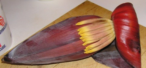 Banana Blossom Whole