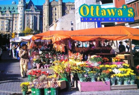 Ottawa Postcard