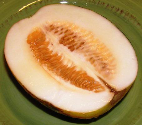 dosakai (dosakaya, vellarika, yellowcucumber)