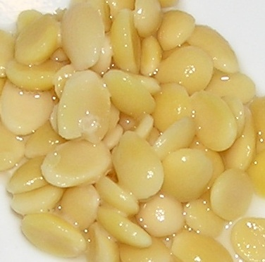 hyacinth beans (val dal, lablab, etc) —rinsed