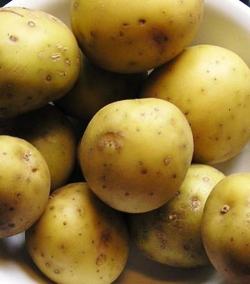 bargain bin babypotatoes