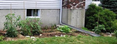 garden injuly