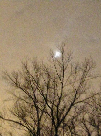 moon in hazy winter night sky