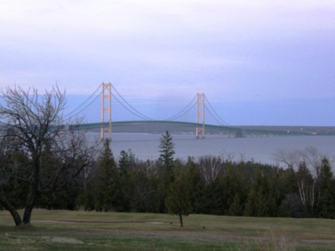 majestic mighty mac