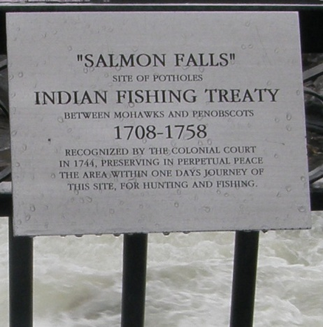 salmon falls plaque