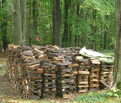 wood pile side view