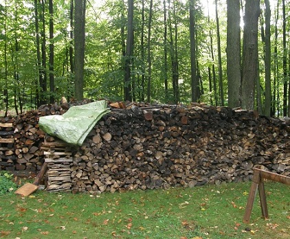 front view of wood pile