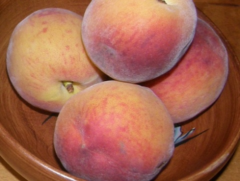 red haven peaches