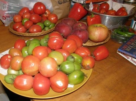 summer bounty in Oct