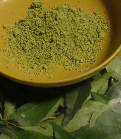 fresh curry leaves podi