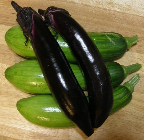 korean squash and brinjals